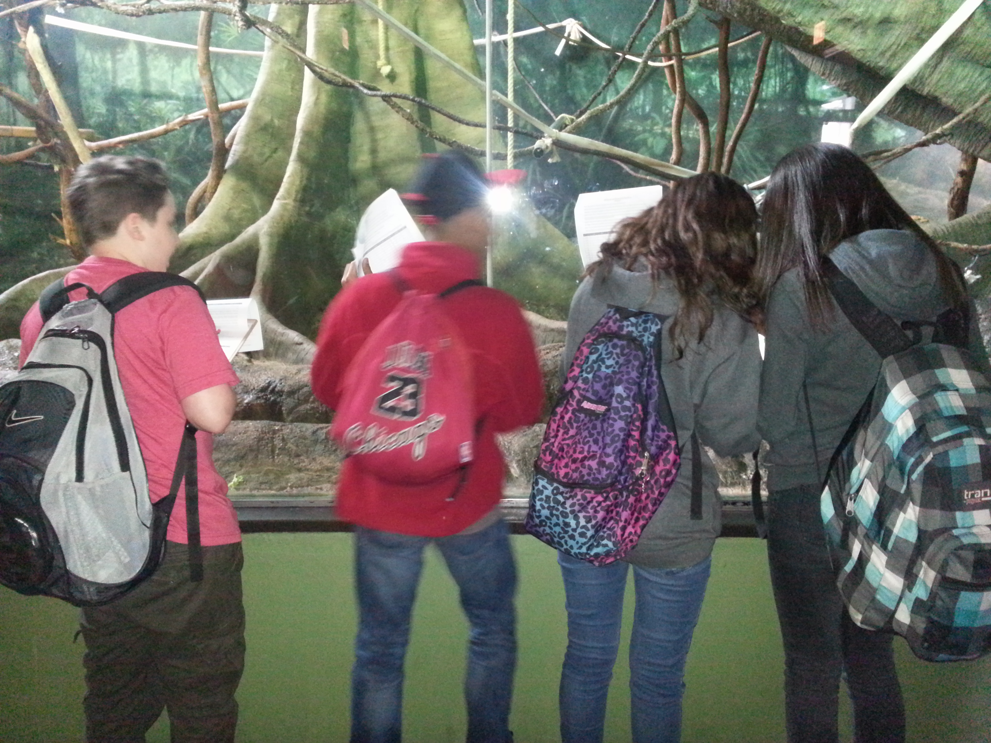 Seventh Grade Science Students Visit Lincoln Park Zoo